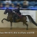 Bbounce & Robin U.S. National Top Ten HA Park AAOTR